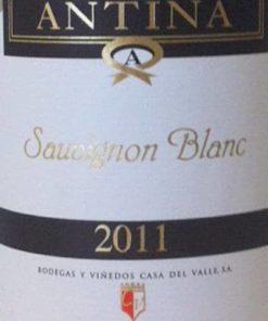 Antina Sauvignon Blanc